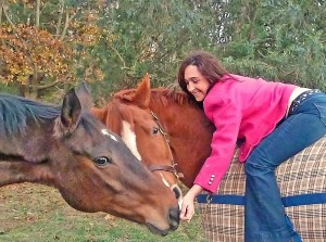 two horse and a girl