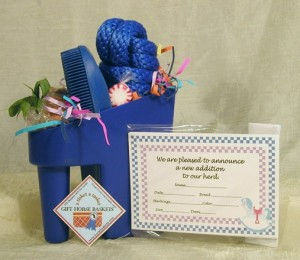 blue scoop with foal gifts