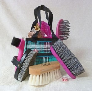 pony Brush kit- new site