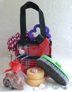 Riding Lesson Kit in Red tote